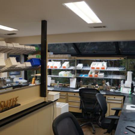In House Ceramic Dental Laboratory